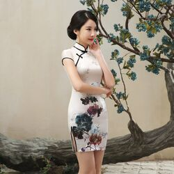 Robe Chinoise Traditionnelle Qipao