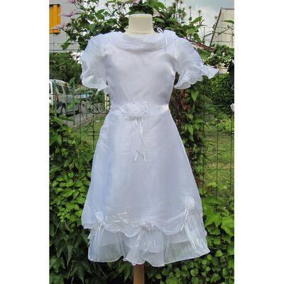 Robe de Mariage de Princesse Blanc